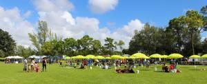 AD Banes Park Festival site