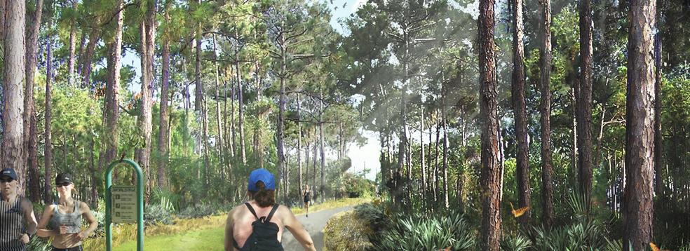 Redefining Trail Oriented Development