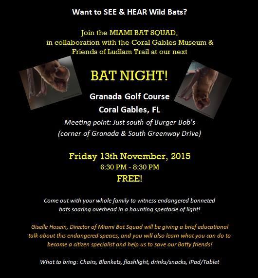 Ludlam Trail bat night