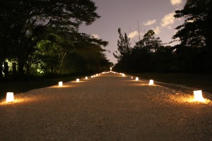 1,000 Luminaries along the Ludlam Trail